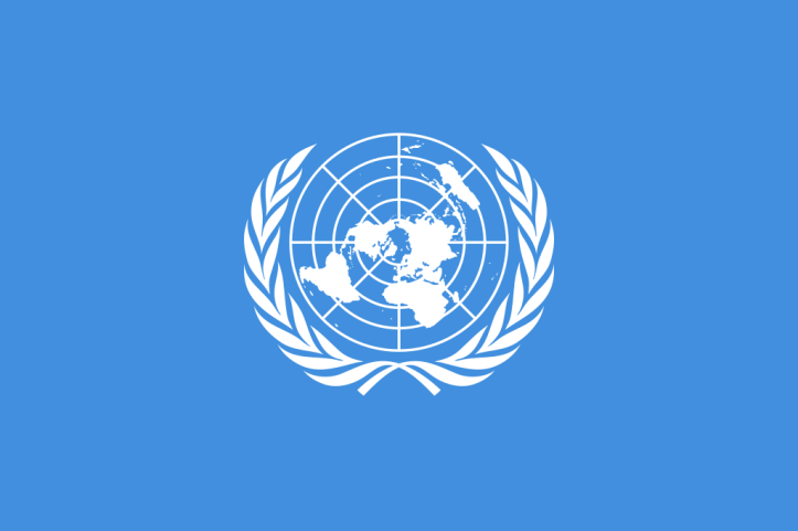 The UN does not seek copyright for the majority of its documents and this image of its official flag is in the public domain.