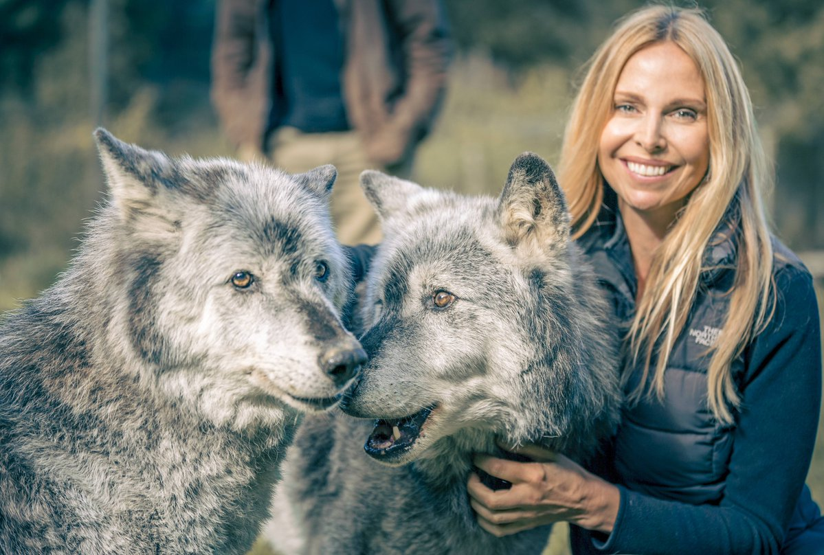 Anneka Svenska, Official Sponsor of World Animal Day